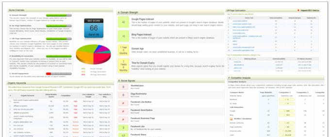 Search Engine Optimization Reporting Dashboard